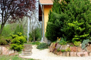 Moson Patak Vendégház kert